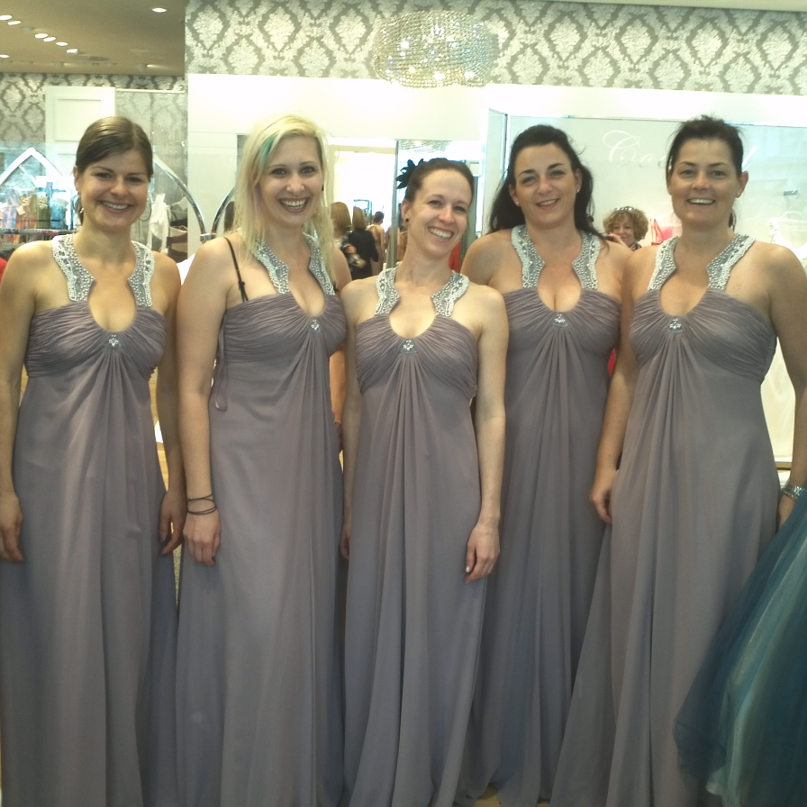 The Bride and her Bridesmaids V.01