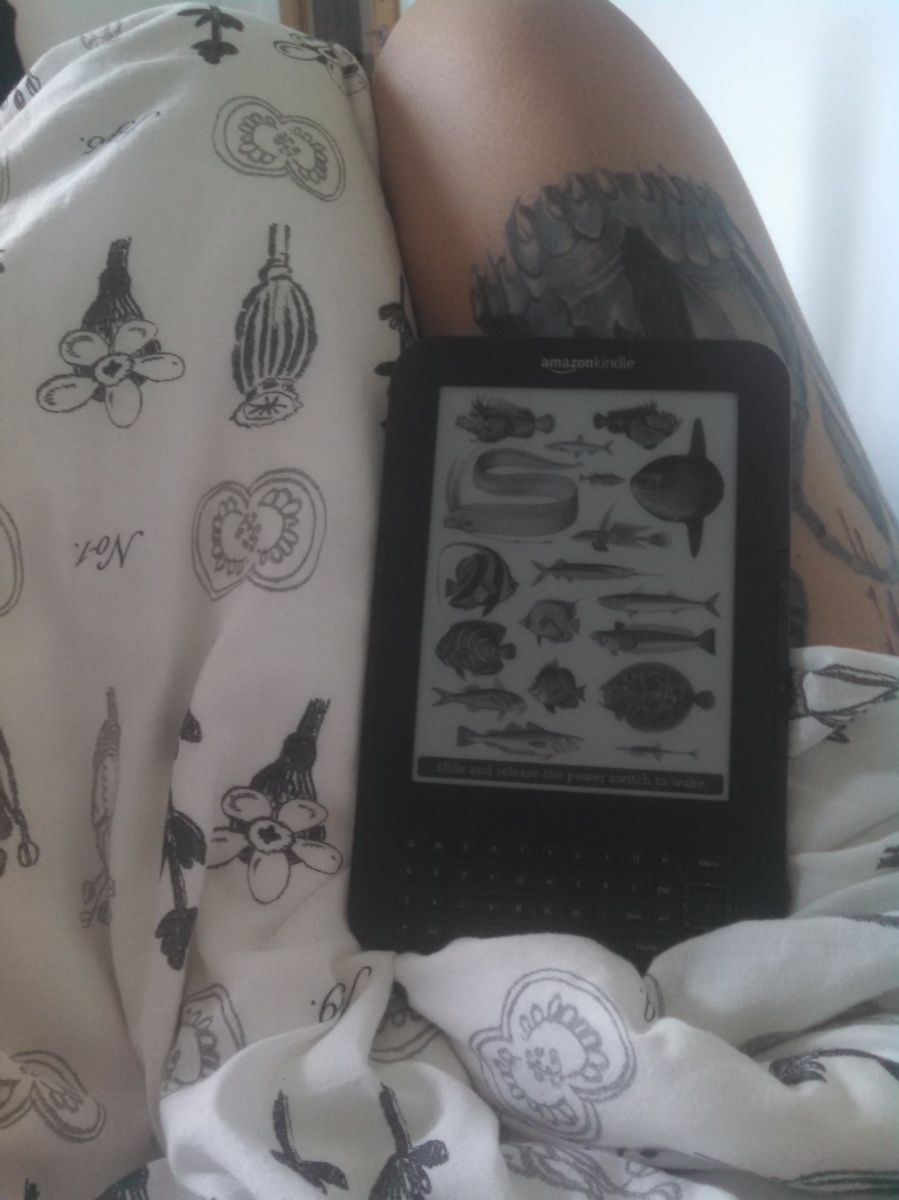 My Kindle and me
